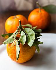 marmellata di arance amare con pectina naturale