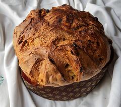 Panettone fatto in casa con lievito madre, ricetta di Morandin