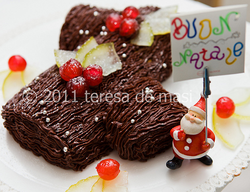 La ricetta del Tronchetto di Natale al cioccolato (preparato da Irene)