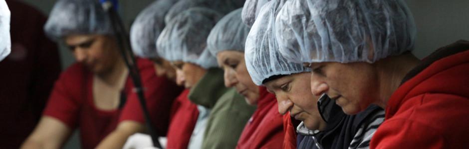 """Bosnia Erzegovina - Bratunac: COOPERATIVA INSIEME """"Donne da Nobel per la pace"""""""
