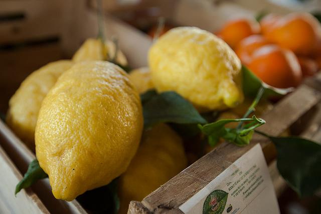 ricetta del limoncello